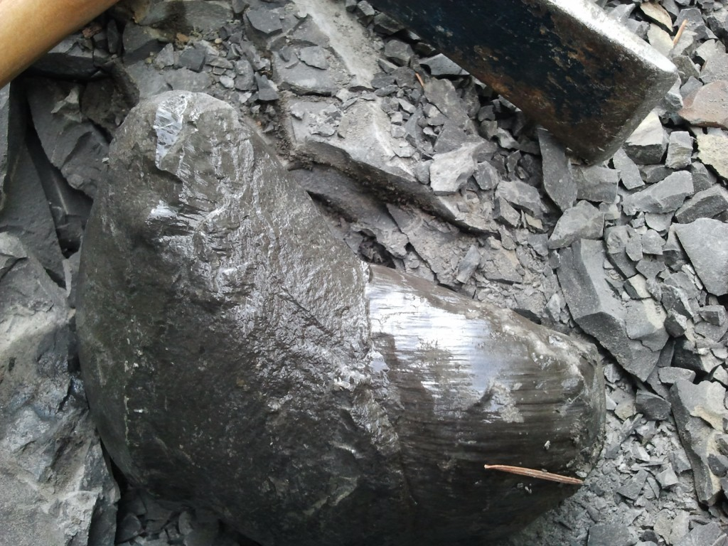 THIS particular concretion had me SO excited! Just LOOK at the striations on the righthand side of it.